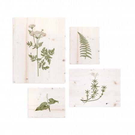 Pack de tableaux motifs botaniques